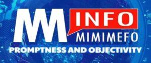 MimiMefo Info logo (1)